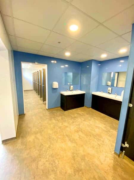 Toilet renovation image
